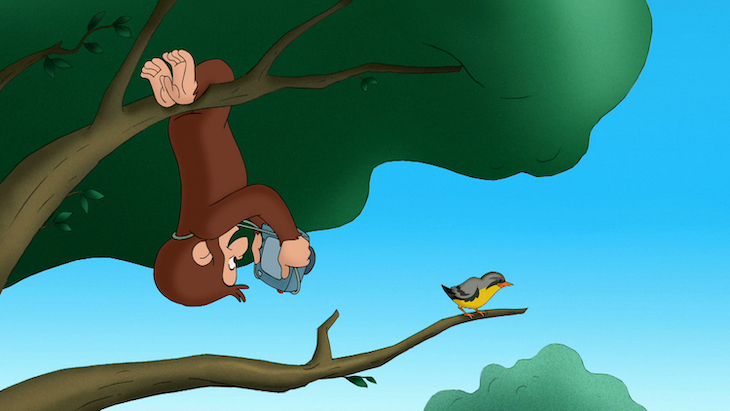 'Curious George'