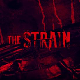 8-24 the strain