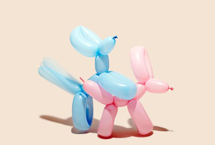 "Name: Balloon Dogs Specs: 11 x 17"" Medium: Canson Platine Value: $1,500"