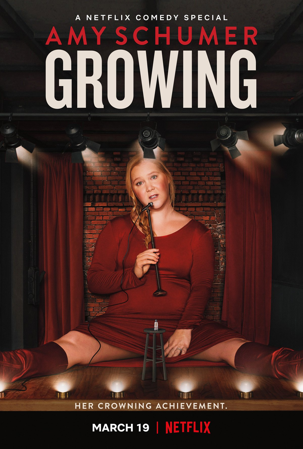 'Amy Schumer: Growing' key art [Netflix]